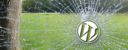 WordPress installatieproblemen