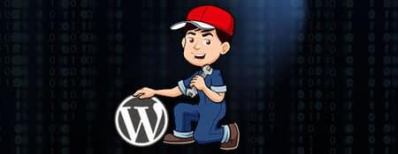 wordpress oplossingen