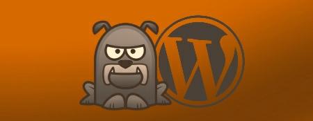 Wat doet WordPress zelf voor een betere WordPress beveiliging?