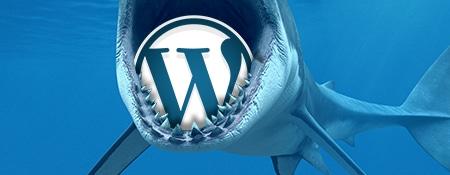 WordPress beveiligings plugins – De introductie