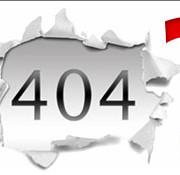 404 wordpress error