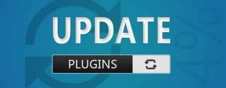 Plugins updaten of plugins niet updaten?