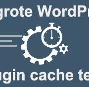 wordpress plugin cache test